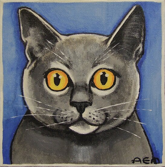 The Blue Cat by Anni Morris