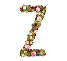 Capital Letter Z Part of a set of letters, Numbers and symbols by PhotoStock-Isra