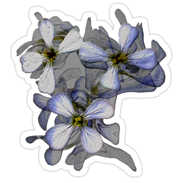 Floral trio in grey and blue  by StickerNuts