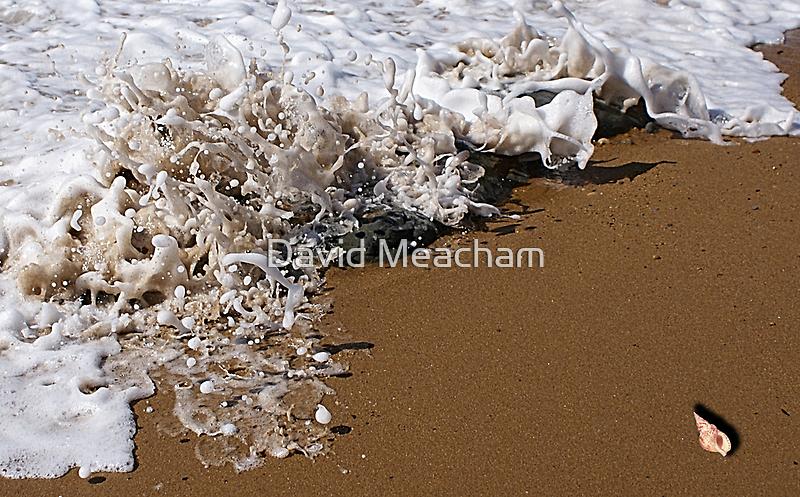 Champagne  by David Meacham