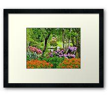 The Best Garden In NZ - Maple Glen - Southland Framed Print