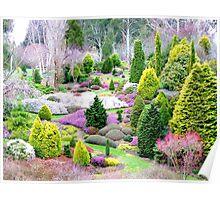 A Glympse Of Fairy Land ... Conifers Maple Glen - NZ Poster
