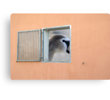 window with view Canvas Print