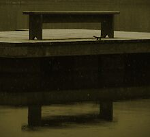 Bench Reflection by Amage