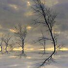 Dancing Trees ! by Elfriede Fulda