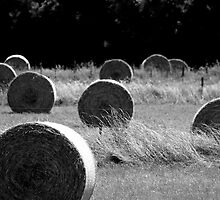 'Hay Bales' by Lisa Wilson