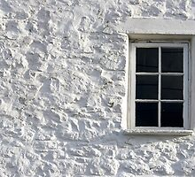 Window by Lucy Hollis