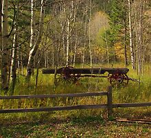 Wagon in the Woods     Cascade, CO by dfrahm