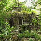 hiding house by bellebuckley