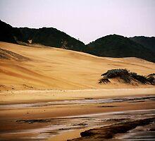 Dunes by Friedrich331