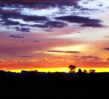 Warrumbungles Sunrise by pedroski