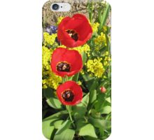 Colourful Corner - Vibrant Red and Pink Tulips iPhone Case/Skin