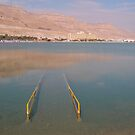 Beware of Dead sea	 by Efi Keren