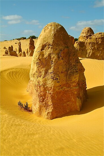 Standing in time, Nambung National Park by Penny Smith