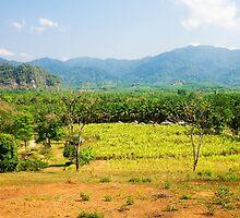 Khao Sok National Park, Thailand  by jaymephoto