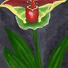Costa Rican Orchid by cruserart