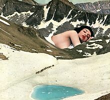 Winter migration by Sammy  Slabbinck