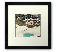 Winter migration Framed Print