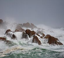 Storm, West Coast, Tasmania by David Jamrozik