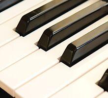 The music of life. by NKSharp