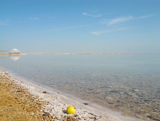 Dead sea alive 1 by Efi Keren