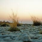 Salt pan sunrise by CarolineKruger