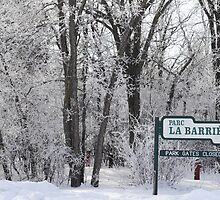 La Barriere Park by Geoffrey