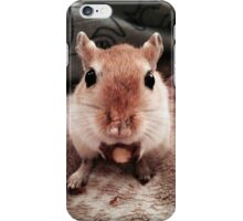Gerbil 2 iPhone Case/Skin