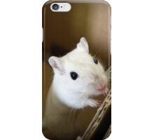 Gerbil 5 iPhone Case/Skin