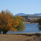 Canberra by Colin  Ewington