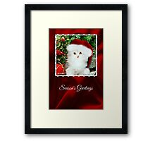 Mistletoe, The Silver Shaded Chinchilla Christmas Card Framed Print