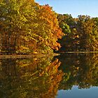 Brown County Reflections by Lorale