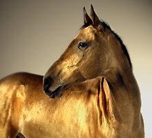 golden portrait by Dan Shalloe