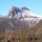 Wildlife contrast at Cradle Mountain by jade77green
