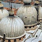 Round towers on the roofs at San Marco in Venice  by fuxart