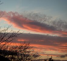 Sunset 27th January 2008 by hilarydougill