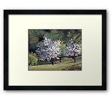 Spring on Franklin Road Framed Print