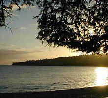 Lanai Sunset by Kathryn Eve Rycroft