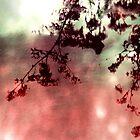 Organic Impressions by SRowe Art