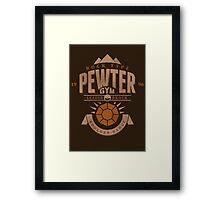 Pewter Gym Framed Print