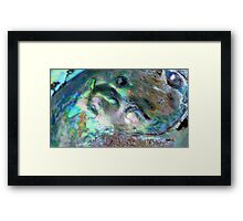 Pearl in a Shell - Southland - New Zealand Framed Print