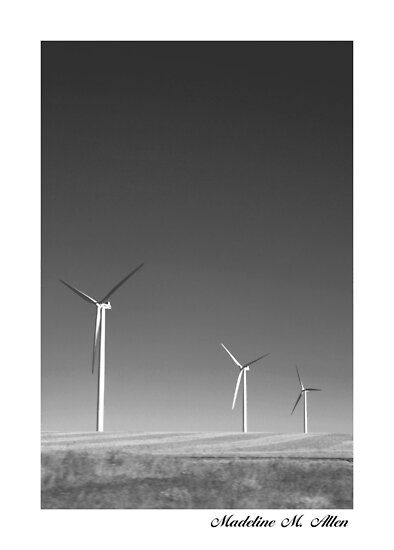 Wind Farming by Madeline M  Allen