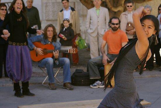 Flamenco by Kiwikiwi