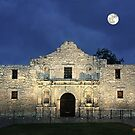 Remembering The Alamo by Lanis Rossi