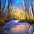 Winter on the Creek  by Don Siebel