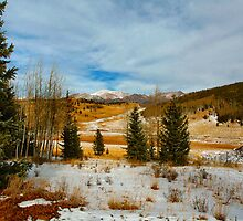 Crisp Winter Day by Holly Werner