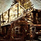 Alligerville Blacksmith by PineSinger