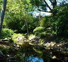 Fairytale Reflection by photolove