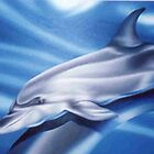Dolphin oils by koru