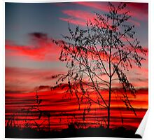 Templestowe Sunset Poster